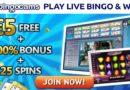 Bingo Cams mobiel