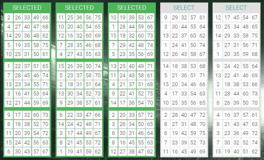 bingo spelregels 75 ball variant bingo
