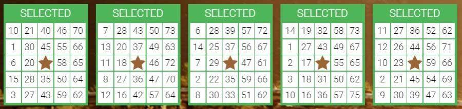 spelregels bingo: 75 BALL